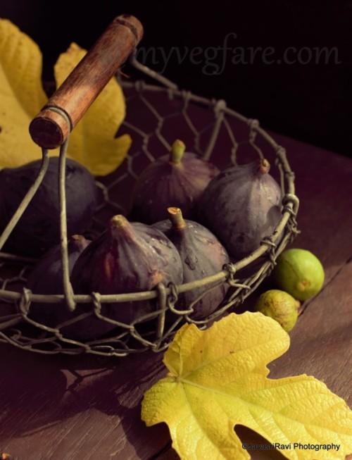 Figs Pom Plus 2